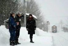 多伦多两名女留学生设局 加拿大一名华人被骗15万-留学世界 Study Overseas Global Study Abroad Programs Overseas Student International Studies Abroad