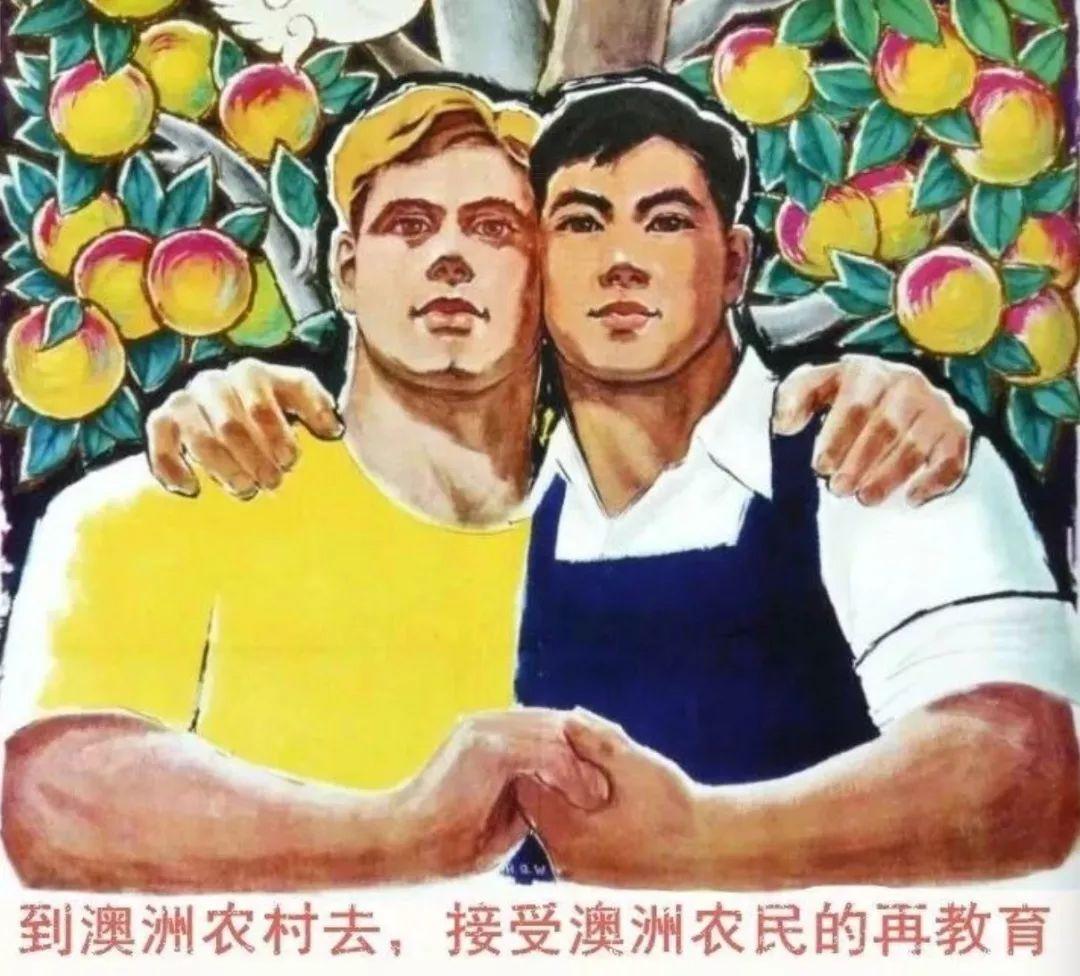 """""""急缺会中文的,哭着喊着要人!""""隔壁澳洲发大招了!想移民的你准备改道吗?"""