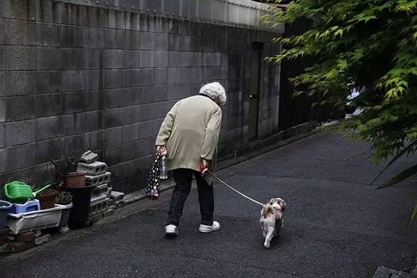 在日本,我见到了第十一级孤独…