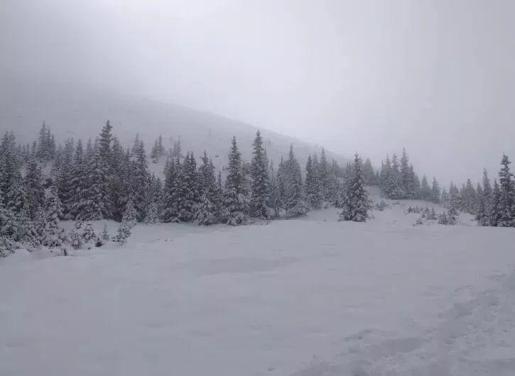 瑟瑟发抖+崩溃!阿省6月暴雪!Jasper沦陷!