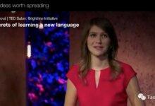TED演讲又火了:会多种语言的孩子真的比单一语言小孩更聪明吗?-留学世界 Study Overseas Global Study Abroad Programs Overseas Student International Studies Abroad
