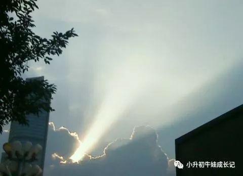 """北京精英疯魔记:""""儿子是神人转世,我花了3900万培养他一统世界"""""""