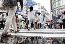 """日本最新打卡地!把""""猪圈""""搬到了市中心?游客们不嫌臭还挤破头...-留学世界 Study Overseas Global Study Abroad Programs Overseas Student International Studies Abroad"""
