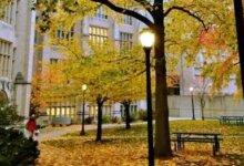 中国留美学生数暴跌惊多家世界媒体,美国高校收入重挫急坏了-留学世界 Study Overseas Global Study Abroad Programs Overseas Student International Studies Abroad