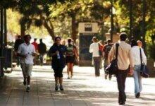 1/3留学生找工作求职被剥削!这才是留学生在国外的真实生活-留学世界 Study Overseas Global Study Abroad Programs Overseas Student International Studies Abroad