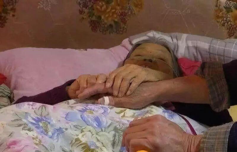 北大博士出国20年无音讯 病危母亲希望死前和儿子再通一次话